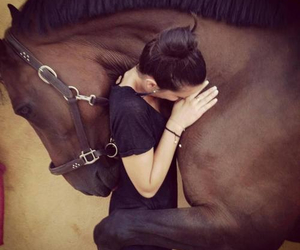 equitation, forever, and girl image