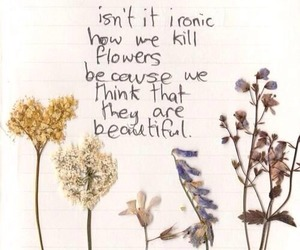 flowers, beautiful, and quotes image