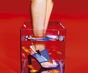 Kenzo, shoes, and toilette paper image