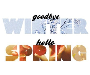 spring, winter, and goodbye image