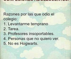 frases and hogwarts image