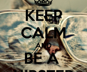 cat and keep calm image
