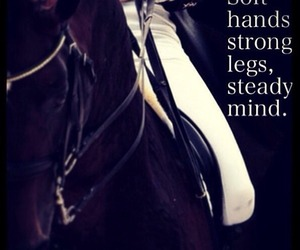 horse, dressage, and quote image