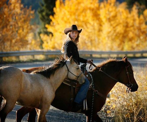 connection, horse, and heartland image