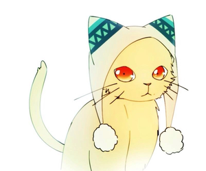 noragami, cat, and anime image