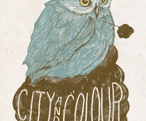 owl and city and colour image