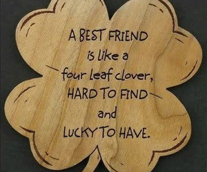 friends, best friends, and clover image
