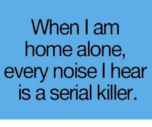 noise, home alone, and alone image