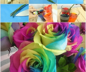 rose, diy, and rainbow image