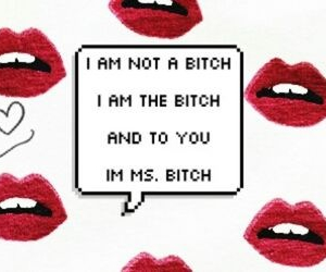 bitch, quote, and lips image