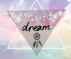 Dream, bird, and sky image