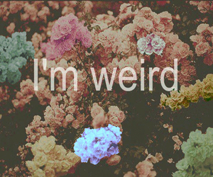 weird, flowers, and quotes image