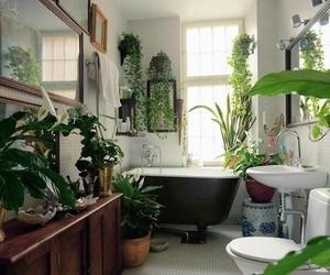 plants, bathroom, and green image