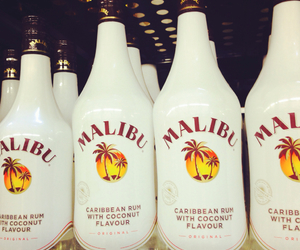 Caribbean, coconut, and malibu image