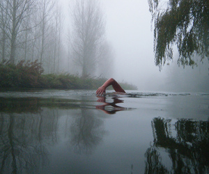 cold, fog, and icy image
