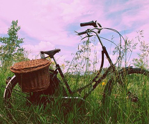 bike, grass, and sky image