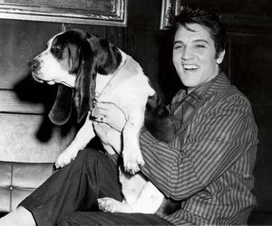 Elvis Presley and dog image