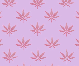 cannabis, illustration, and pink image