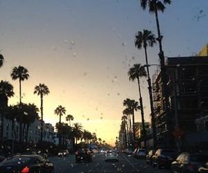 la, palm trees, and sunset image