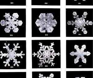 snowflake, winter, and snow image