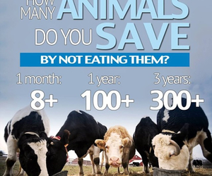 animals, food, and vegan image