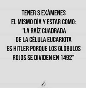 exam, school, and frases image