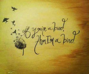 birds, noah, and quotes image