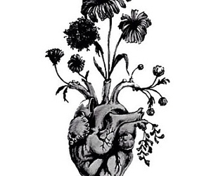 heart, flowers, and indie image