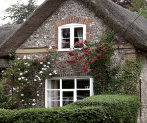 britain, hampshire, and cottage image