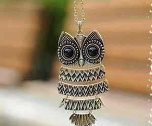 owl, necklace, and jewelry image