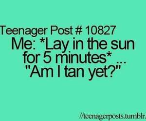 summer, sun, and funny image
