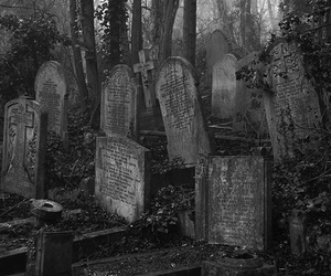 black and white, cemetery, and graveyard image