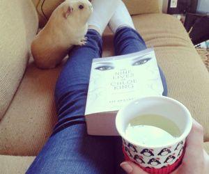 book, guinea pig, and tea image