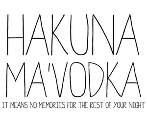 vodka, night, and hakuna matata image