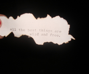 freedom, Paper, and quote image