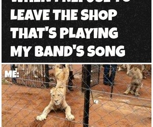 bands, fandom, and funny image