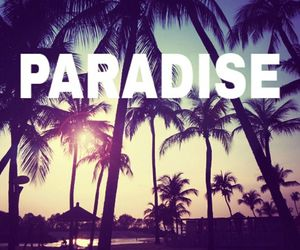 Best, paradise, and tree image