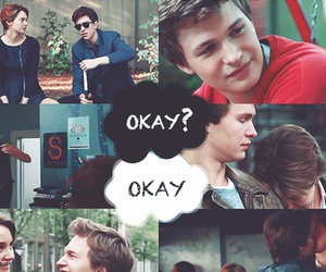 tfios, okay, and the fault in our stars image