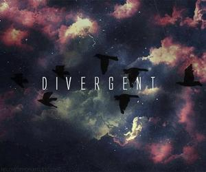 divergent, four, and bird image