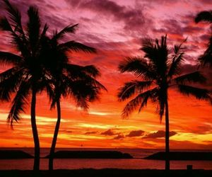 hawaii, beach, and sunset image