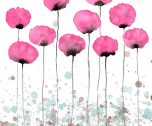 cool, pink, and flowers image