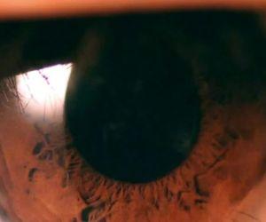 eye, L, and eyes image
