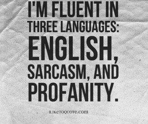 funny, sayings, and quotes image
