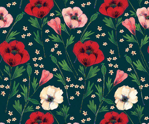 background, flower, and backgrounds image
