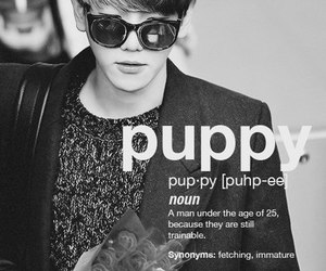 baekhyun, exo, and puppy image