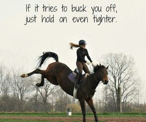 horse, equestrian, and quote image