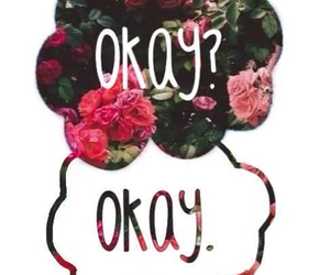 okay, book, and the fault in our stars image