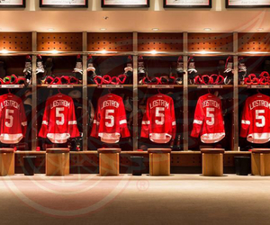 detroit, detroit red wings, and red wings image