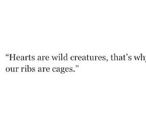 cage, quote, and wild image