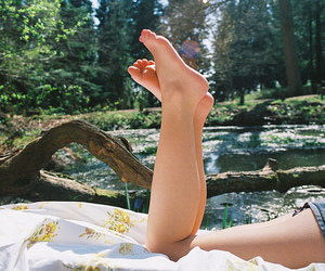 legs, nature, and photography image